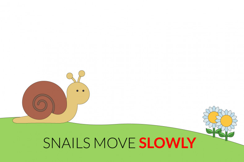 Adverbs of manner: Snails move slowly