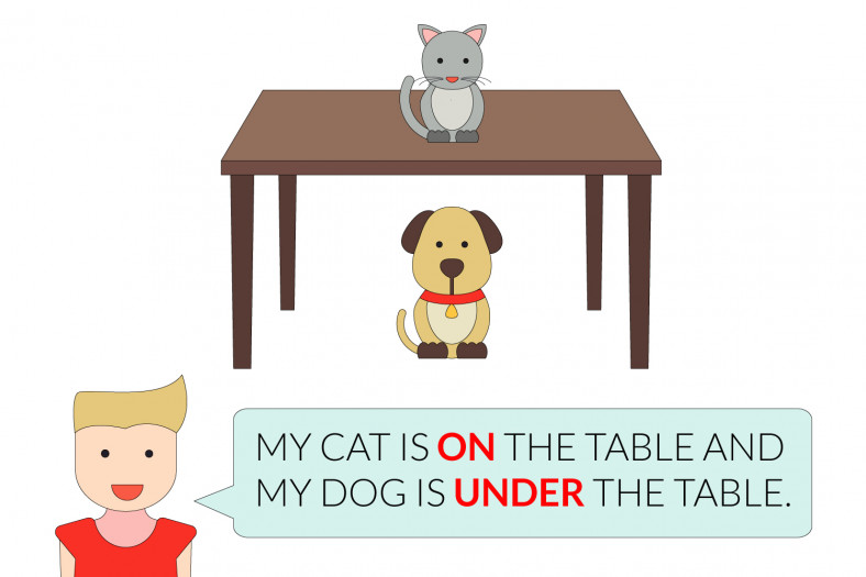 Prepositions of place: My cat is on the table. My dog is under the table.
