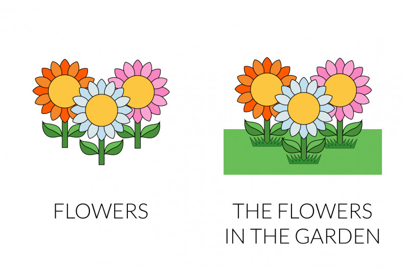 Definite articles: the flowers in the garden